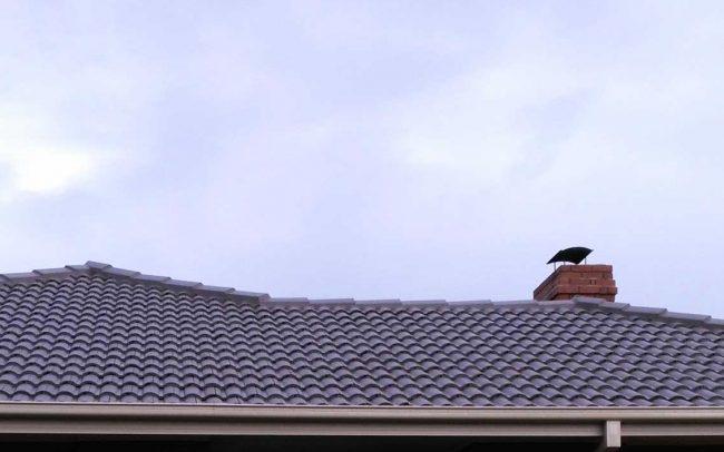 Roof Restoration Job Seaford Melbourne